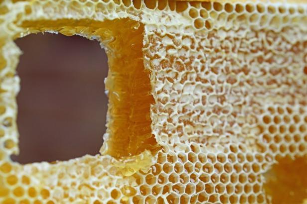 honeycomb-347558_960_720